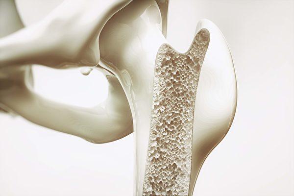 骨骼结构机密启发新型坚固轻盈材料