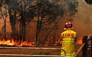 全澳高温再破纪录 新州山火又毁40栋房屋