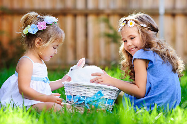 group of two little girl with a bunny rabbit have a easter at green grass background Portrait of yellow scared cat hiding at home Fotolia