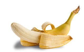 美國畫廊一根12萬美元的香蕉作品被吃掉了
