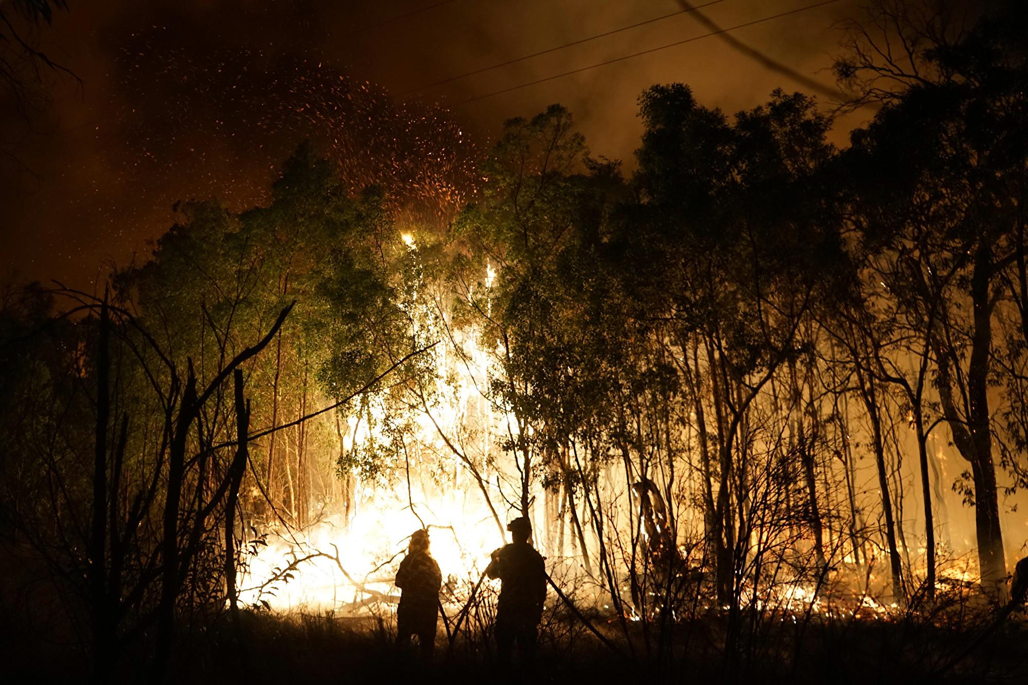 全球逾萬人募捐長跑 為澳洲山火災民籌款
