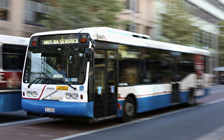 幫助災後恢復 五條新公交路線開通