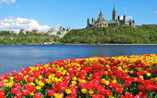 加拿大移民与投资受青睐 全球排名再夺冠