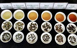 橙僑中心與茶對話續篇 講解茶湯美容
