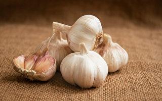 大蒜富含大蒜素,有防癌、抗老化、保護心血管等益處。(Shutterstock)