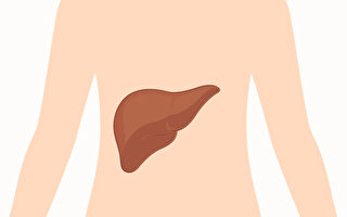 肝臟負有排毒的重要任務,通過一些外在表現探知肝功能。(Shutterstock)