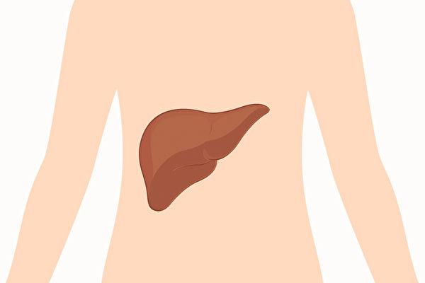 从身体2部位看出肝功能好坏 1招增强肝功能