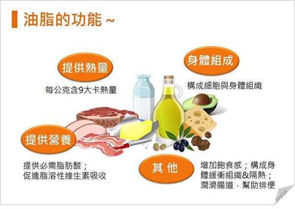 油脂是人體重要營養素,有四大功能。(Stella營養師提供)