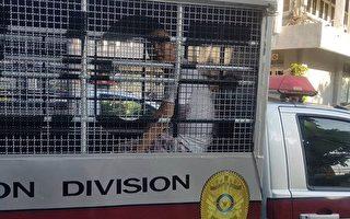 中共渗透国际社会 跨境抓捕滞留泰国难民