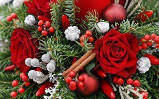 周末好去处(12月5日~8日)怡陶碧谷圣诞游行 市政厅广场假日集市
