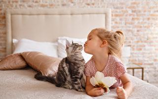 宠物能丰富生活 适合孩子饲养的8种动物