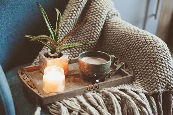 冬日的戶外景緻往往單調無趣。建議可在室內擺一些小型的植物做裝飾。(shutterstock)
