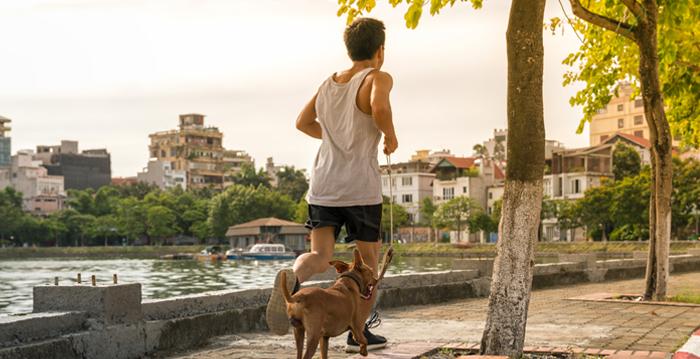 快走或遛狗30分鐘 可降低男性糖尿病風險