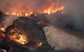 """大火肆虐四个月 墨尔本空污至""""危险""""地步"""