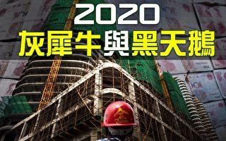 【热点互动】2020中国经济灰犀牛与黑天鹅