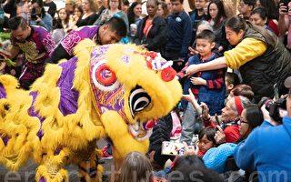 组图:维州民众庆祝中国新年