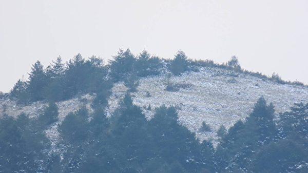 【视频】玉山雪量创20年最大 群峰雪景迷人