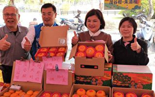 斗六茂谷柑甜度高  縣長呼籲民眾多多選購