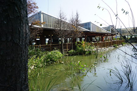田園餐廳與生態池,在這裡用餐顯得特別寧靜