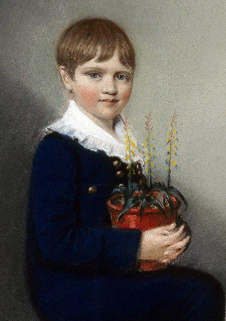 7歲的達爾文(公有領域)