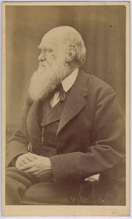 達爾文62歲時,攝於1871年。(公有領域)