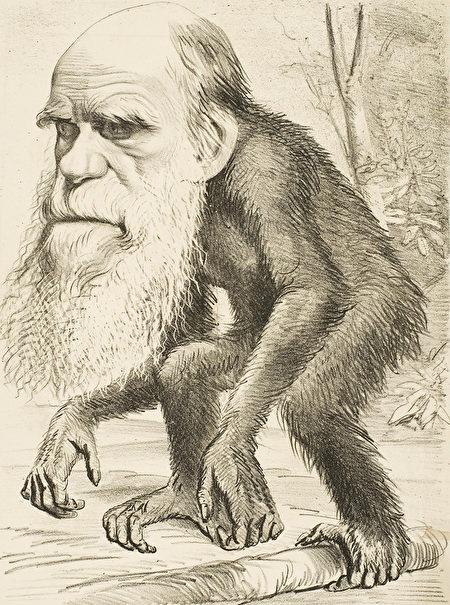 諷刺漫畫反映了1870年代基督徒於「人類與猿類具有共同祖先」這個觀念的反對。(公有領域)