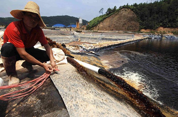 中國南部許多礦業帶來的土壤污染和水污染與農業地帶重疊。圖為紫金礦業造成污染事件。(STR/AFP via Getty Images)
