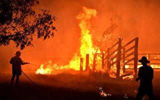 澳大利亚森林大火跨新年 悉尼烟火秀惹争议
