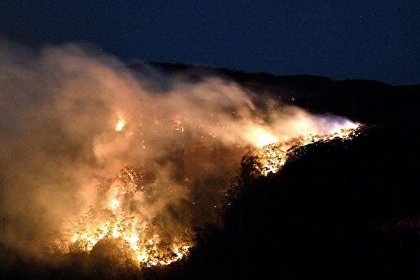 澳洲目前正在遭受前所未見的叢林火災。(SAEED KHAN/AFP via Getty Images)