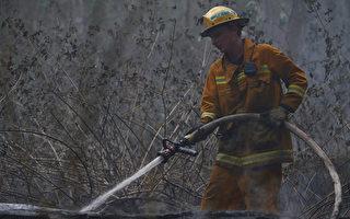 維州自閉症男孩親歷山火 送消防員畫作表示感激