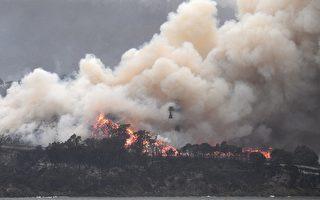澳洲森林大火肆虐 加拿大一家躲电影院6天