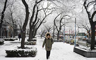 組圖:北京降大雪 逾百航班被取消