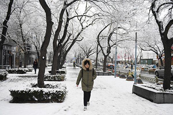 组图:北京降大雪 逾百航班被取消