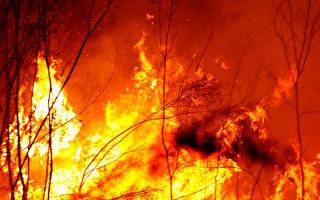 澳洲山火史无前例 各界慷慨解囊 多国援助