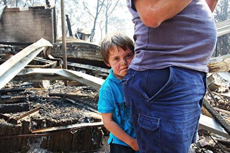 遭火災肆虐後,澳洲民眾重返家園。(Lisa Maree Williams/Getty Images)