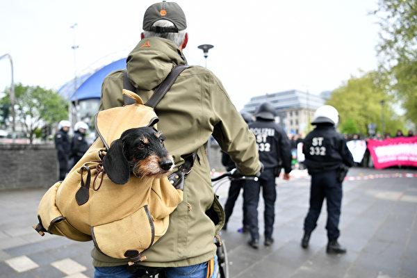 帶著寵物去旅行 狗背包選購指南