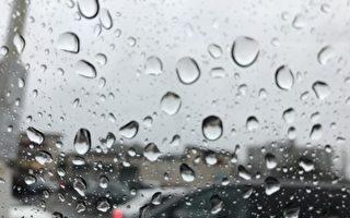 多倫多今年1月降雨量有史以來第二多