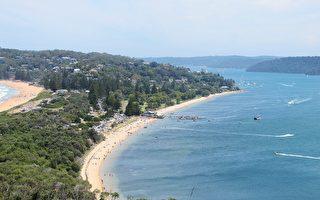 2020悉尼房市展望: 供不应求 房价上扬
