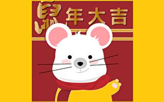 鼠年話鼠:靈鼠和錢鼠