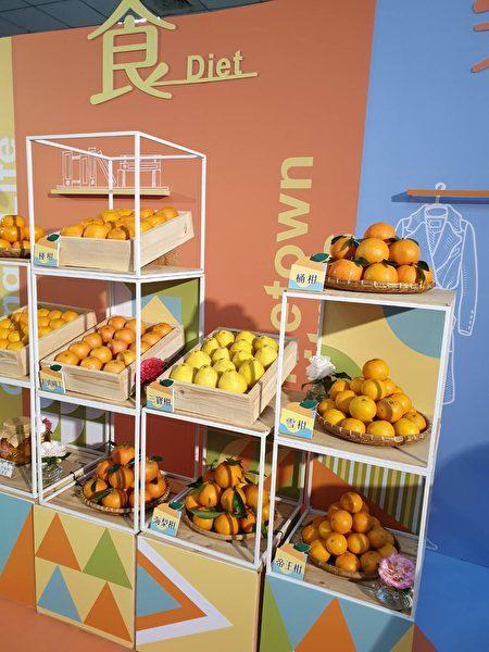 新竹县各种柑桔品质皆为上选