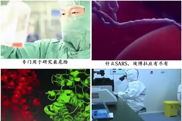 为何中共病毒实验室无法平息阴谋论?