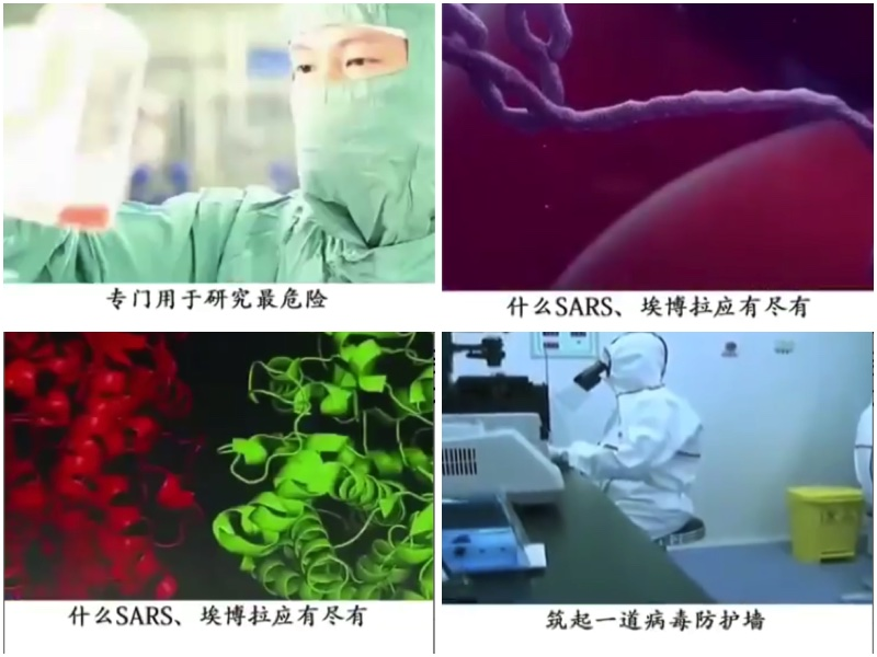 為何武漢病毒實驗室無法平息陰謀論?