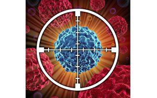 英研究者找到癌细胞通用免疫杀手