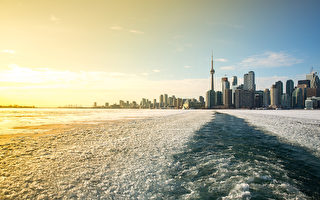 报告:加拿大移民企业家更具创新精神