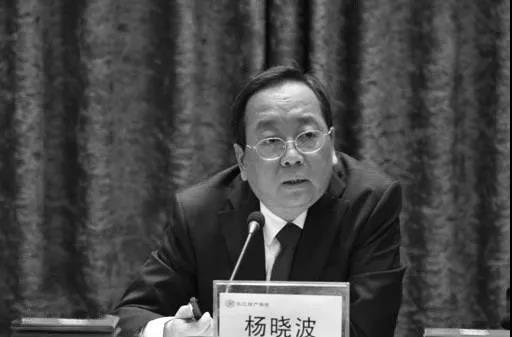 袁斌:疫情防控黃金期,湖北武漢兩會在幹嘛?