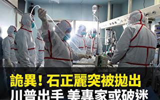凌晓辉:武汉P4实验室对蝙蝠身上病毒的改造