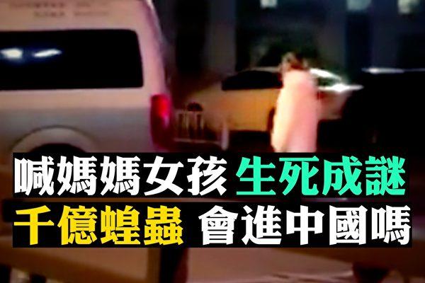 【拍案惊奇】瘟疫衍生悲剧 千亿蝗虫会进中国?