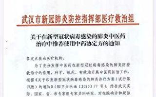 武汉要求所有患者必须吃中药 网民质疑