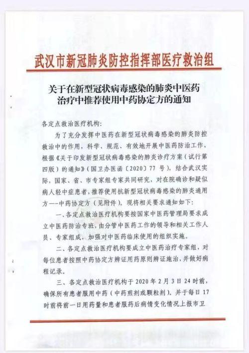 武漢要求所有患者必須吃中藥 網民質疑