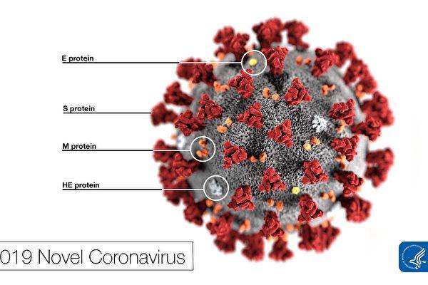 美疾控中心發布中共病毒圖片和篩檢視頻